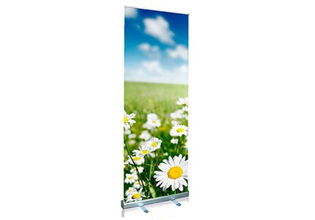 Roll-up Banners - Budget