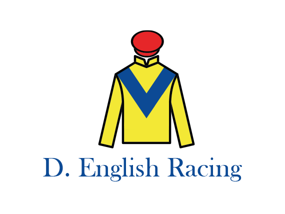 Expert-Marketing-consultants-in-Dublin-for-Horse-Trainers
