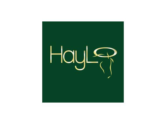Haylo-Horsefeeder---Digitial-Marketing-Campaign-Consultants